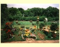 Zomer 1999